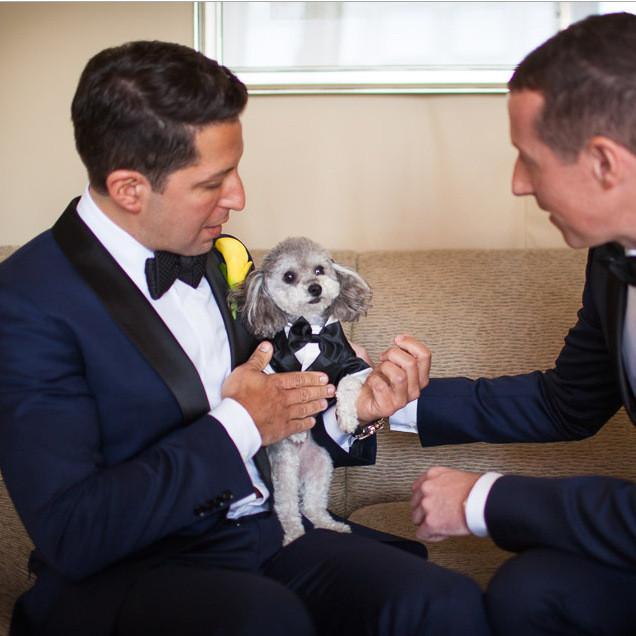 Wedding: Adam and Pete (Four Seasons, Manhattan)